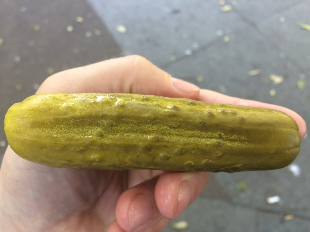 Kosher Dill Pickle from HORMAN'S BEST PICKLES