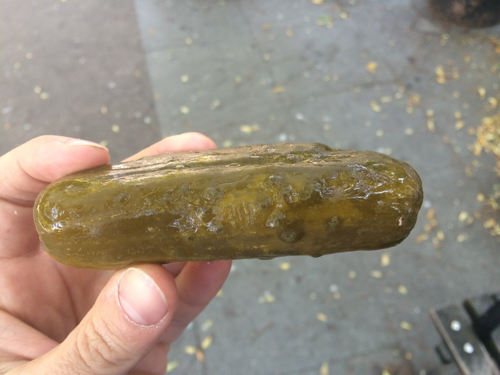 Sour Pickle from HORMAN'S BEST PICKLES